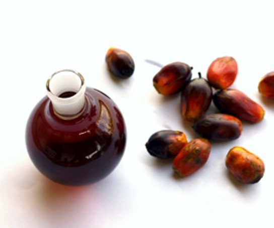 Palm kernel, remedy for convulsion in FCT communities